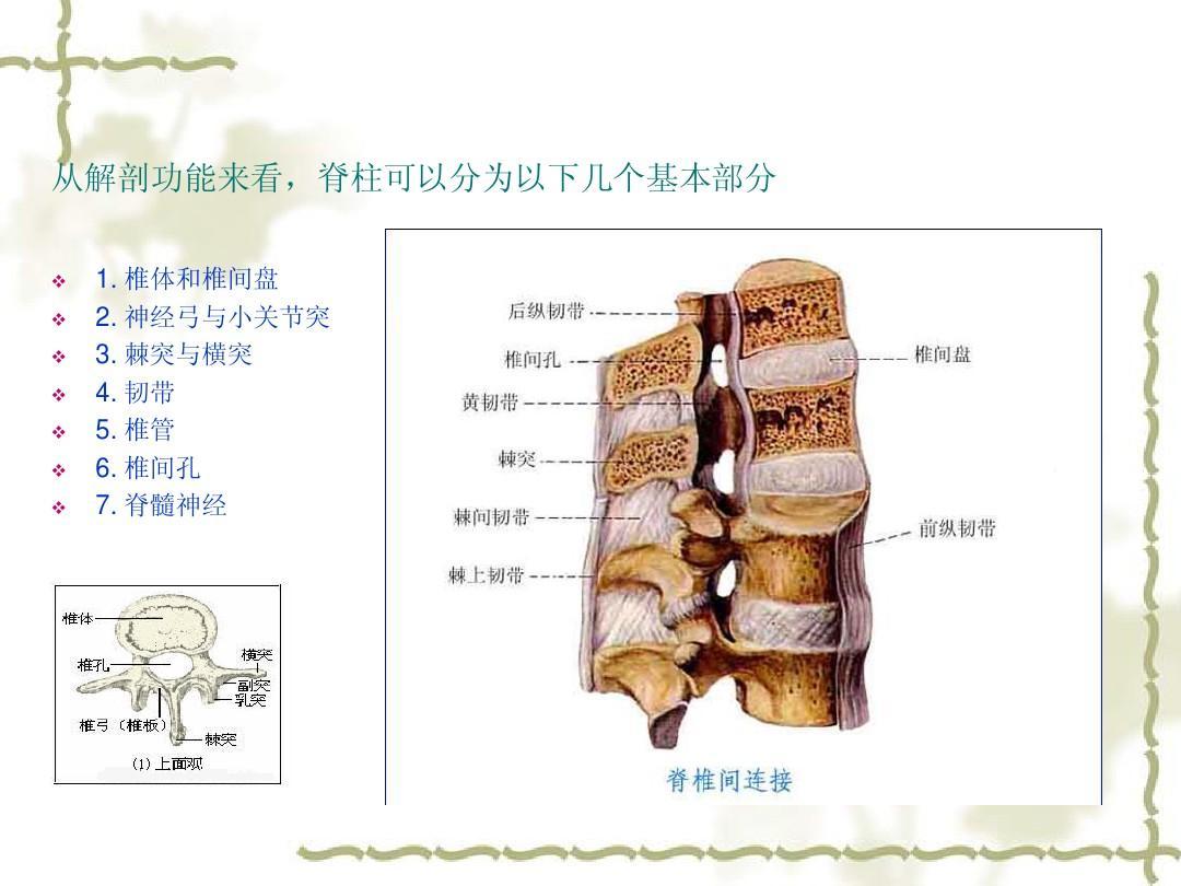压缩性骨折后遗症_脊椎压缩性骨折怎么护理-腰椎压缩性骨折怎么保养
