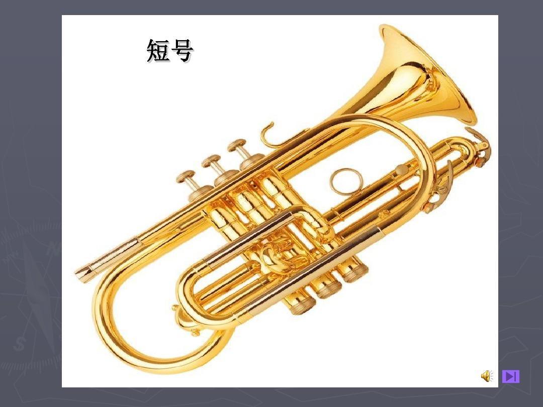 西洋乐器有哪些名称图片 西方打击乐器名称大全