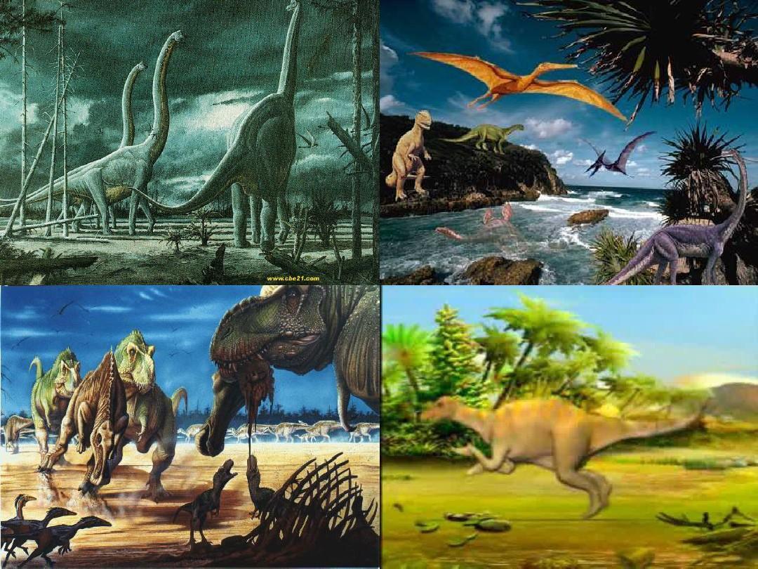 34 神秘的恐龙ppt