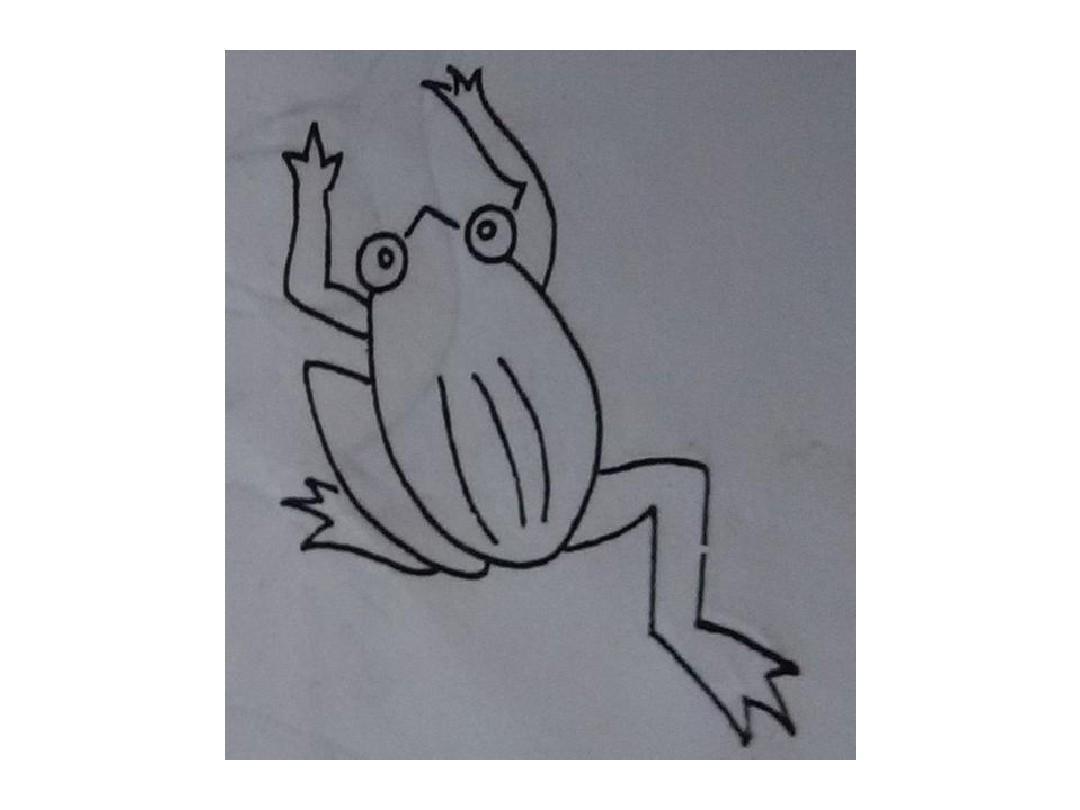 小学美术课简笔画,适合学前班,小学一,二年级