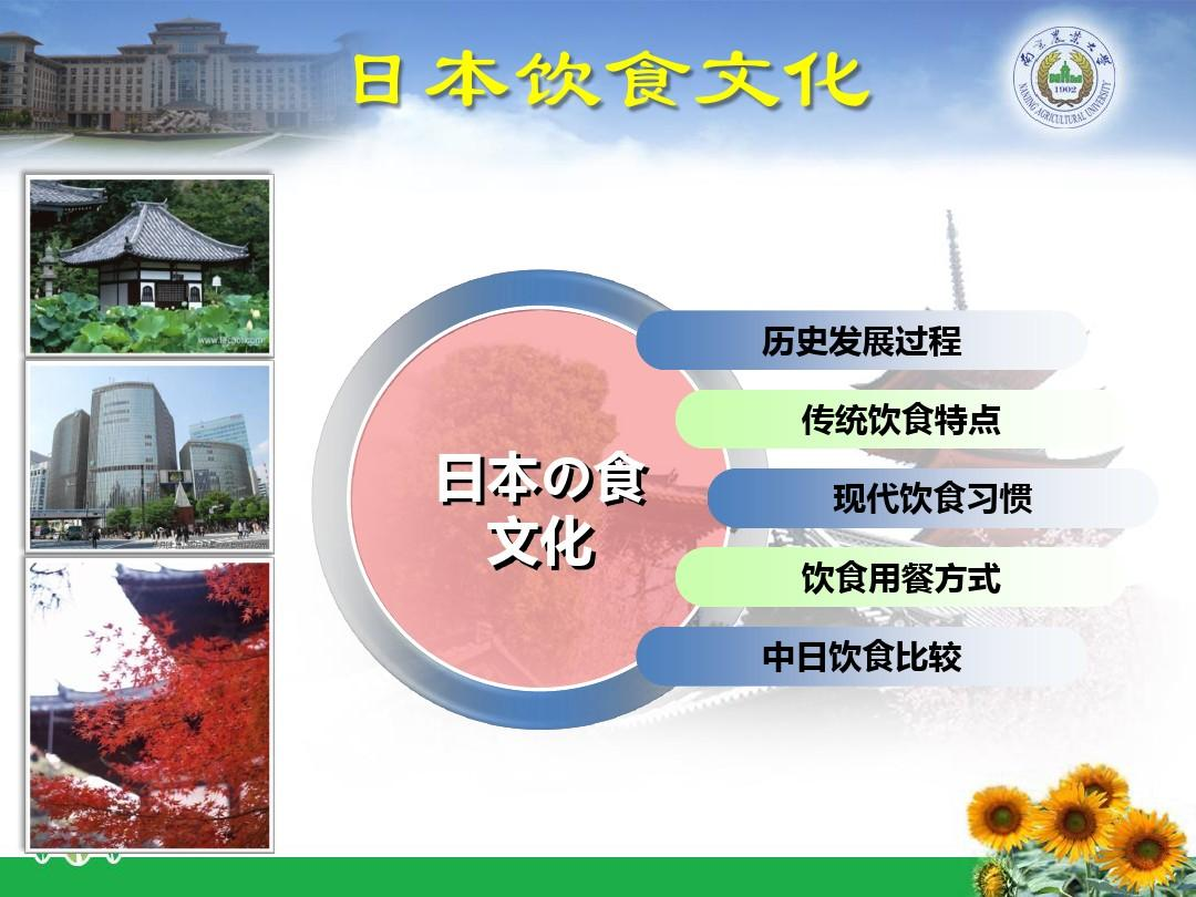 日本饮食文化论文的提纲