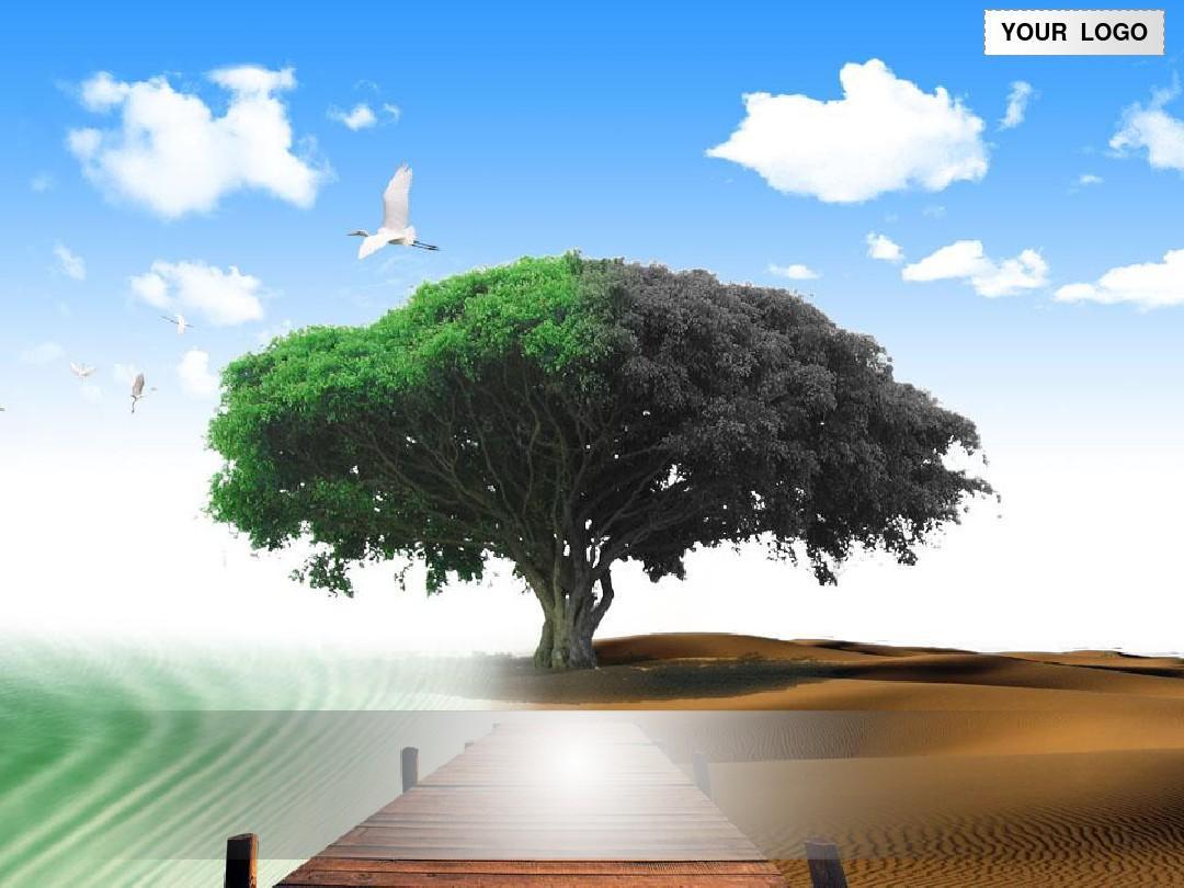 大自然风景主题模板