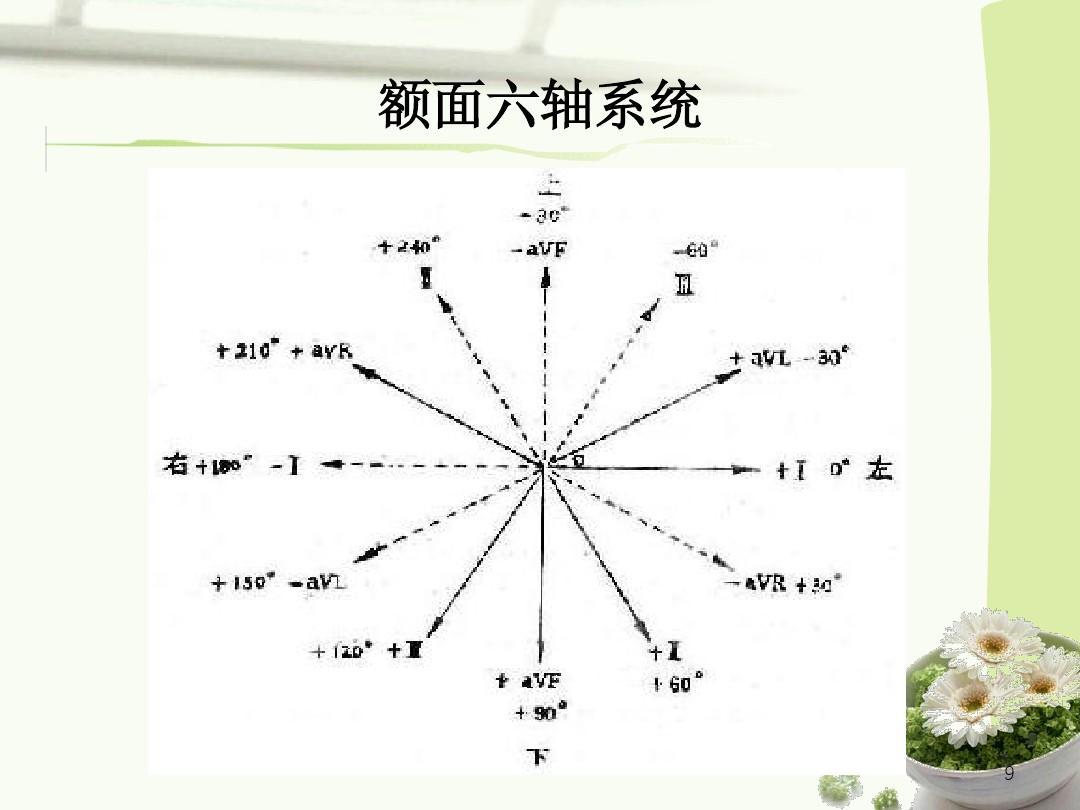 心电图的原理及导联方式