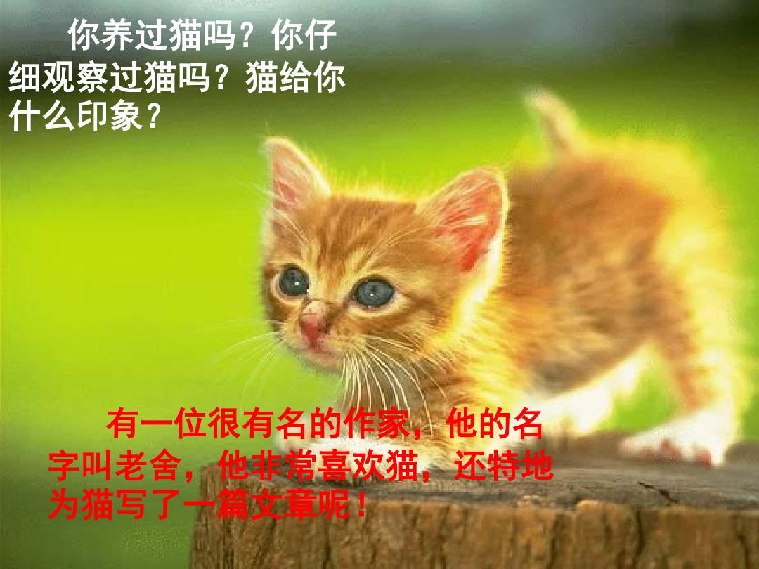 人教版四年级上册_第3页 (共28页,当前第3页) 你可能喜欢 人教版四年级上册语文猫课件