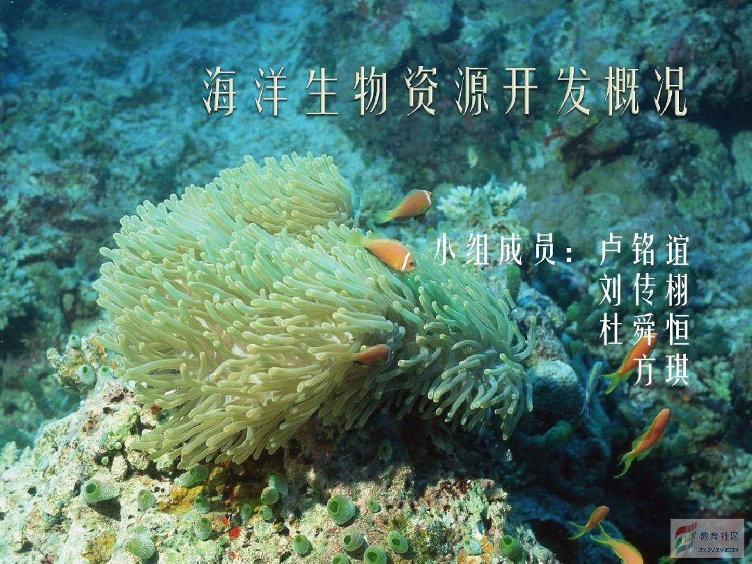 海洋生物资源发概况