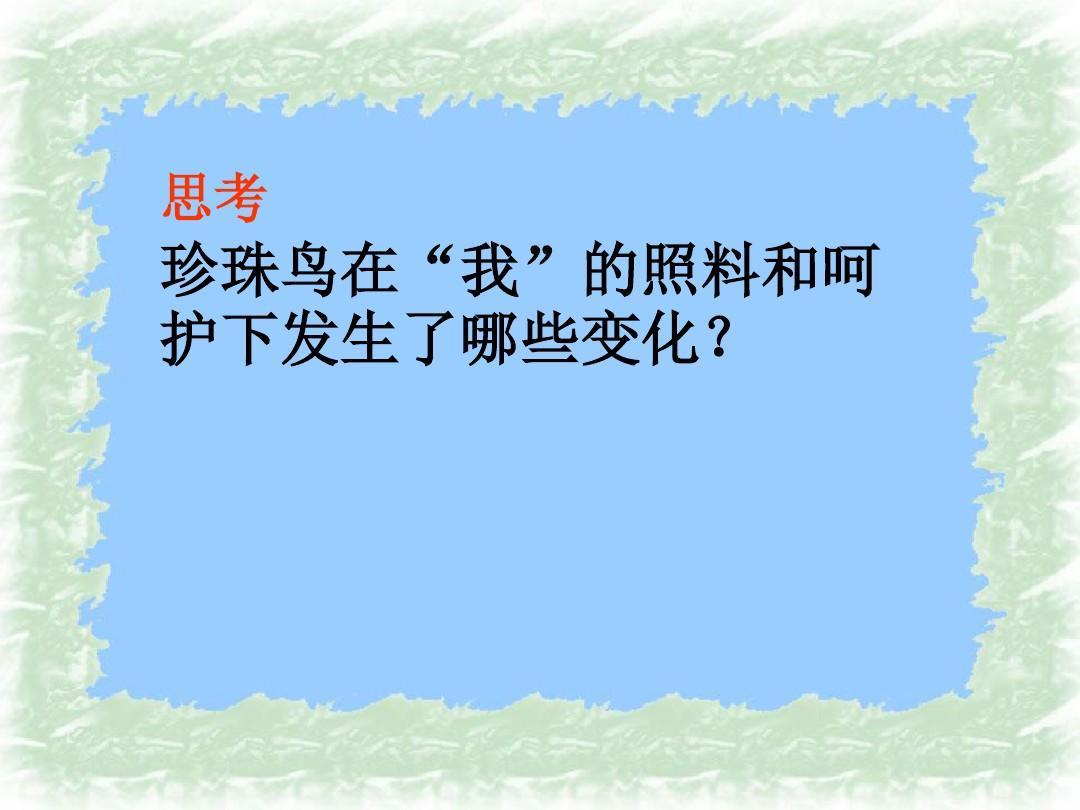 2017秋上册版课件五年级语文第16课《珍珠鸟》ppt人教苏教版算24点说课稿豆丁图片