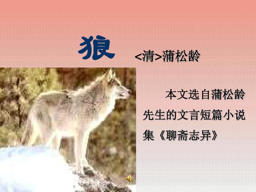 七年级语文狼课件