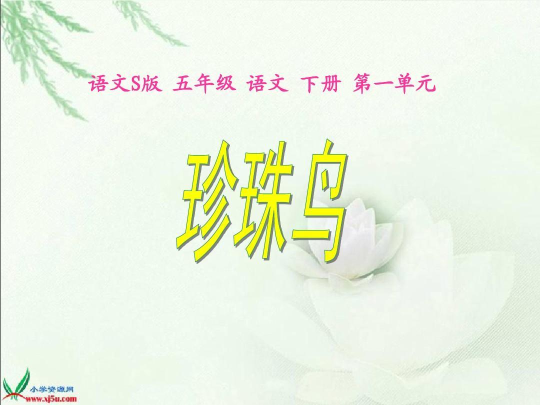 珍珠鸟语文(语文S版教案五年级课件)PPT_wo培智实用语文十二册下册图片