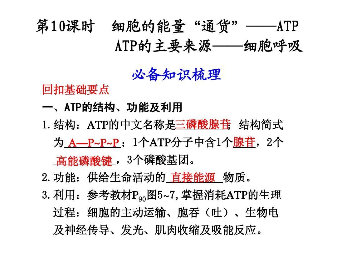 """第10课时-细胞的能量""""通货""""——ATP、ATP的主要来源——细胞呼吸"""