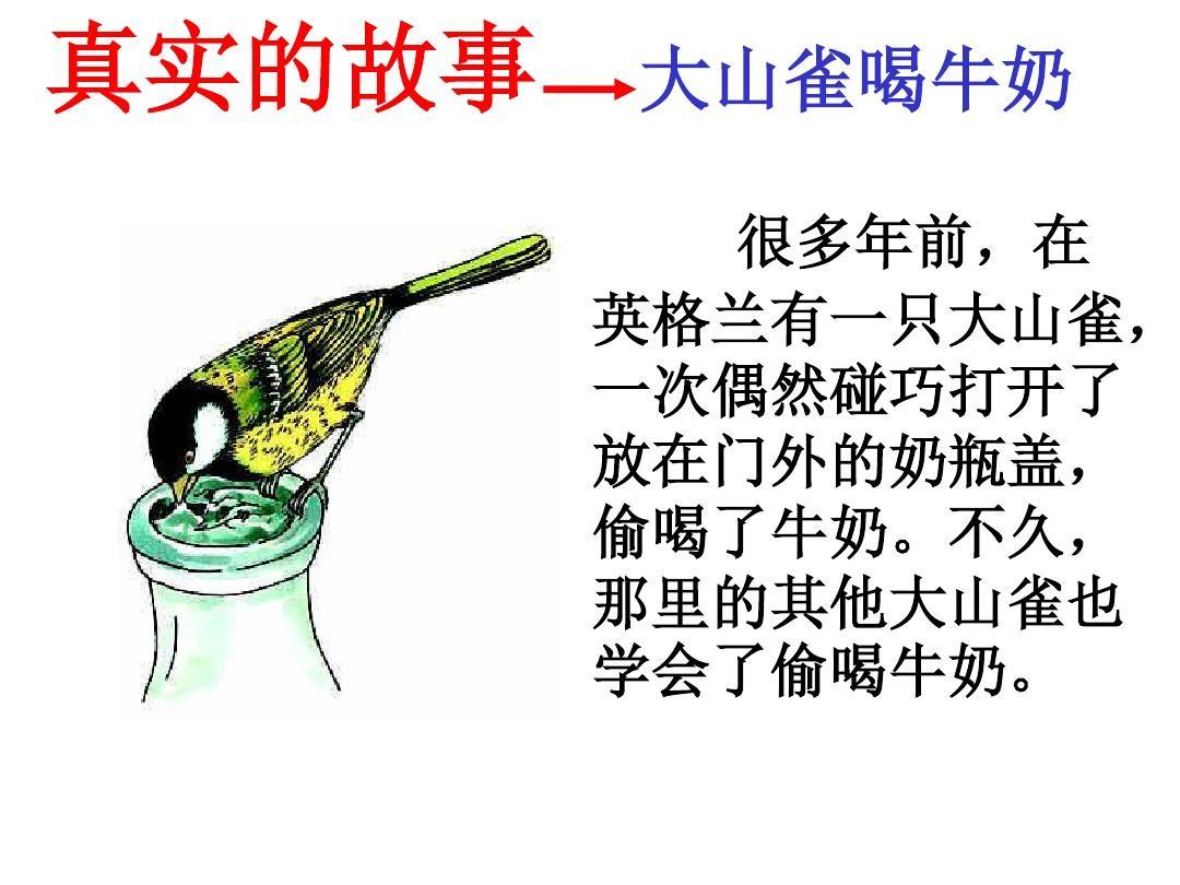 所有v牛奶牛奶教育科学初中的行为ppt真实的鬣羚大山雀喝故事动物是四不像吗图片