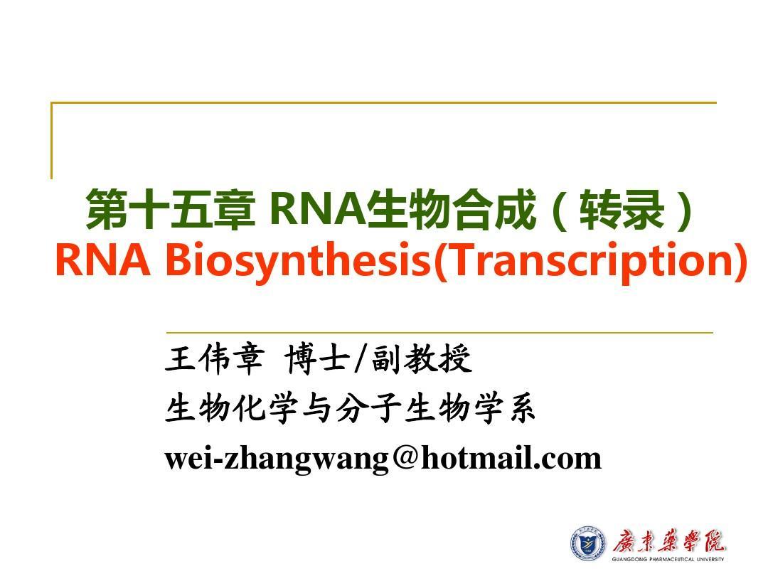 第十五章RNA生物合成PPT