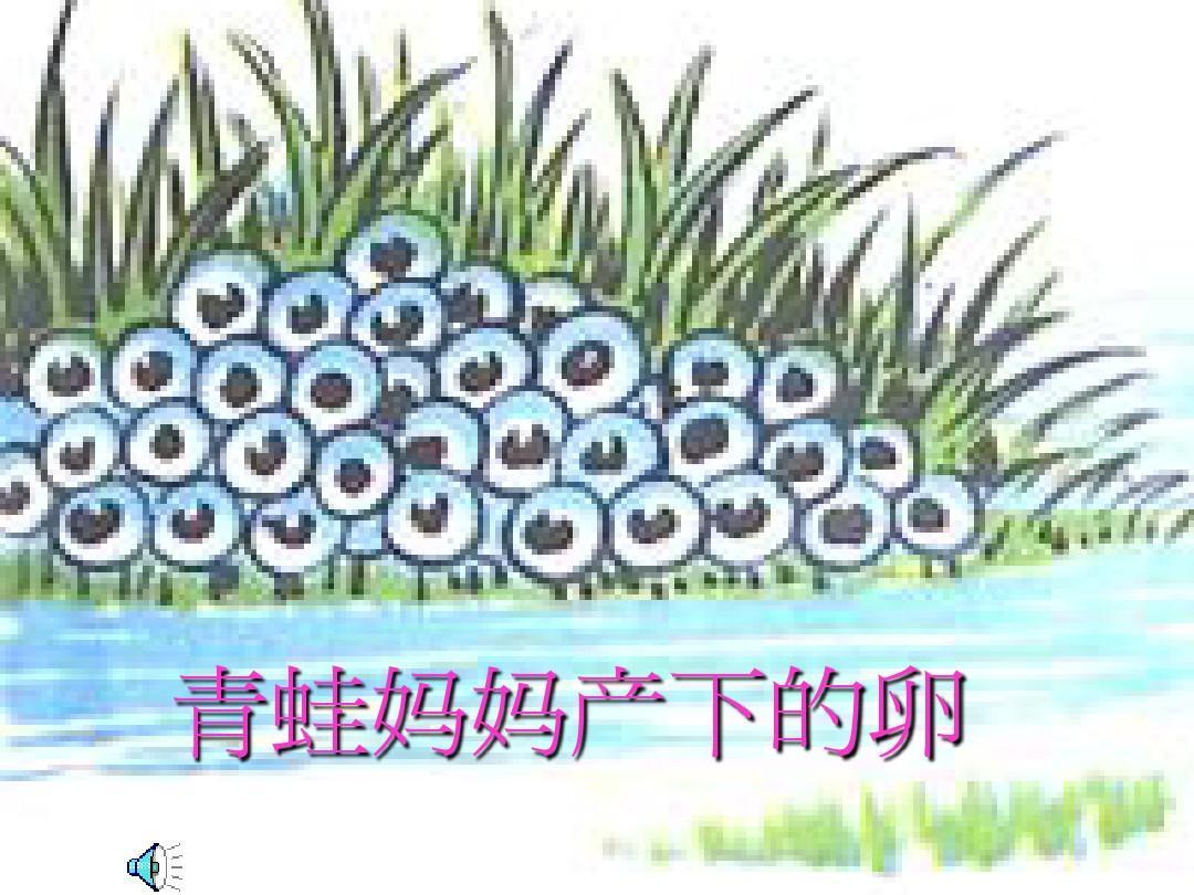 大班科学小蝌蚪变青蛙ppt图片
