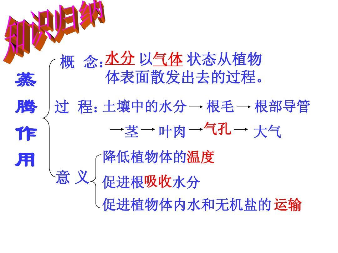 作用_绿色植物的三大作用专题复习 [自动保存的]答案ppt