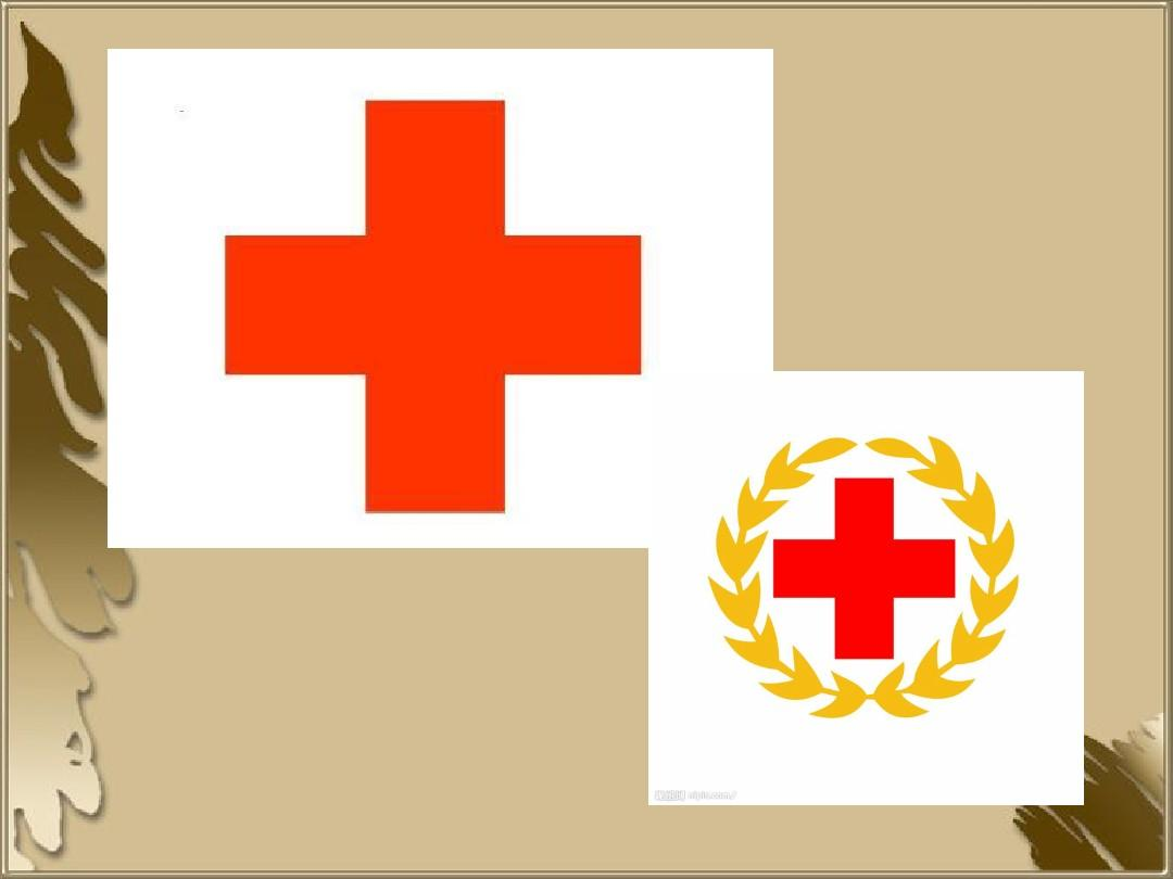 红十字会的起源.ppt