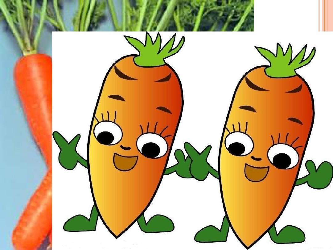 6-2胡萝卜素的提取课件(25张ppt与朱元思书ppt说课稿图片