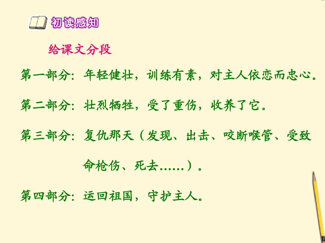 五课时年级下册义犬护理1第一课件教学北京版ppt神经外科复仇语文PPT图片