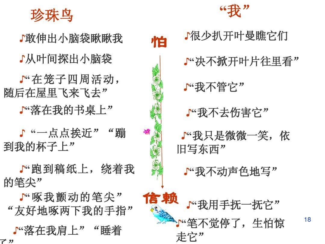 珍珠鸟精品全集ppt苏教版七年级课件语文教案上册图片