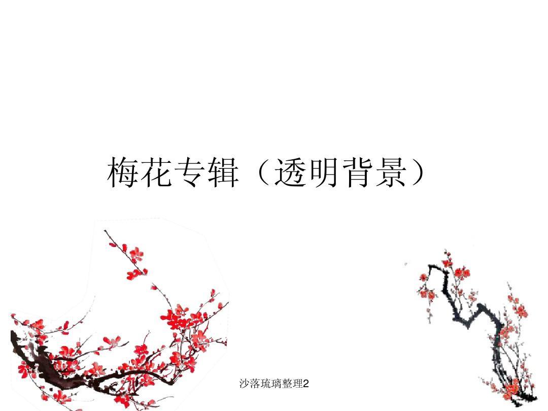 锐普ppt作品_ppt素材-梅花专辑(透明背景)_word文档在线阅读与下载_文档网