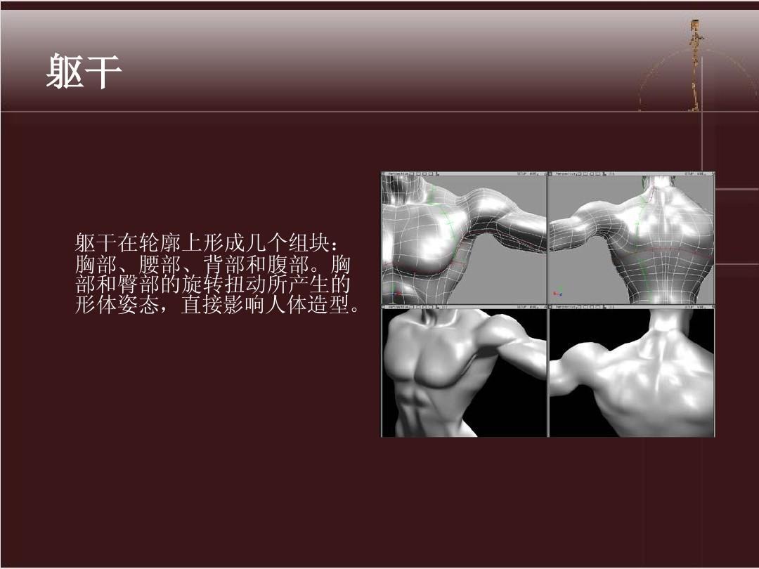 人体动态解剖 美术 漫画 3D 素描必学