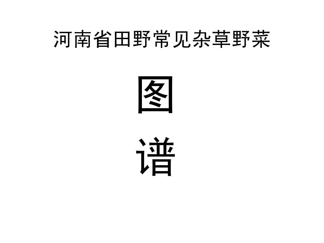 河南省田野常见杂草野菜图谱PPT