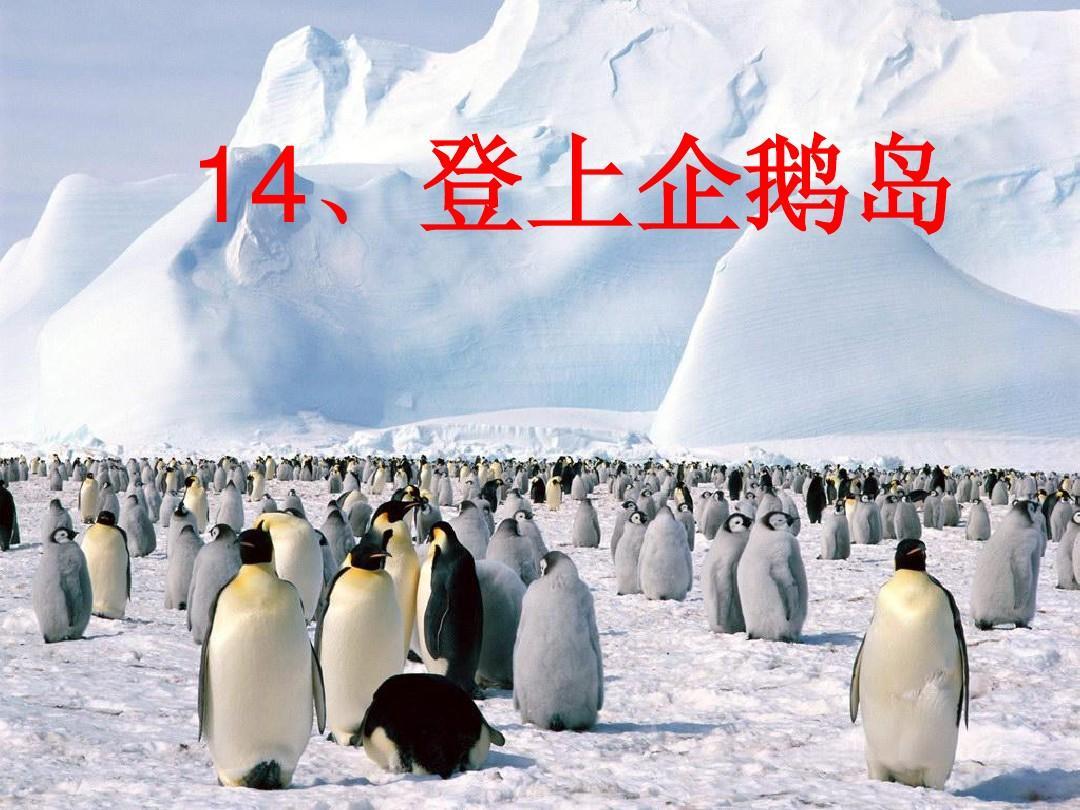 上册S版三课件单元《第14课登上企鹅岛》语文苏教版七年级下册教案第一语文年级v上册图片