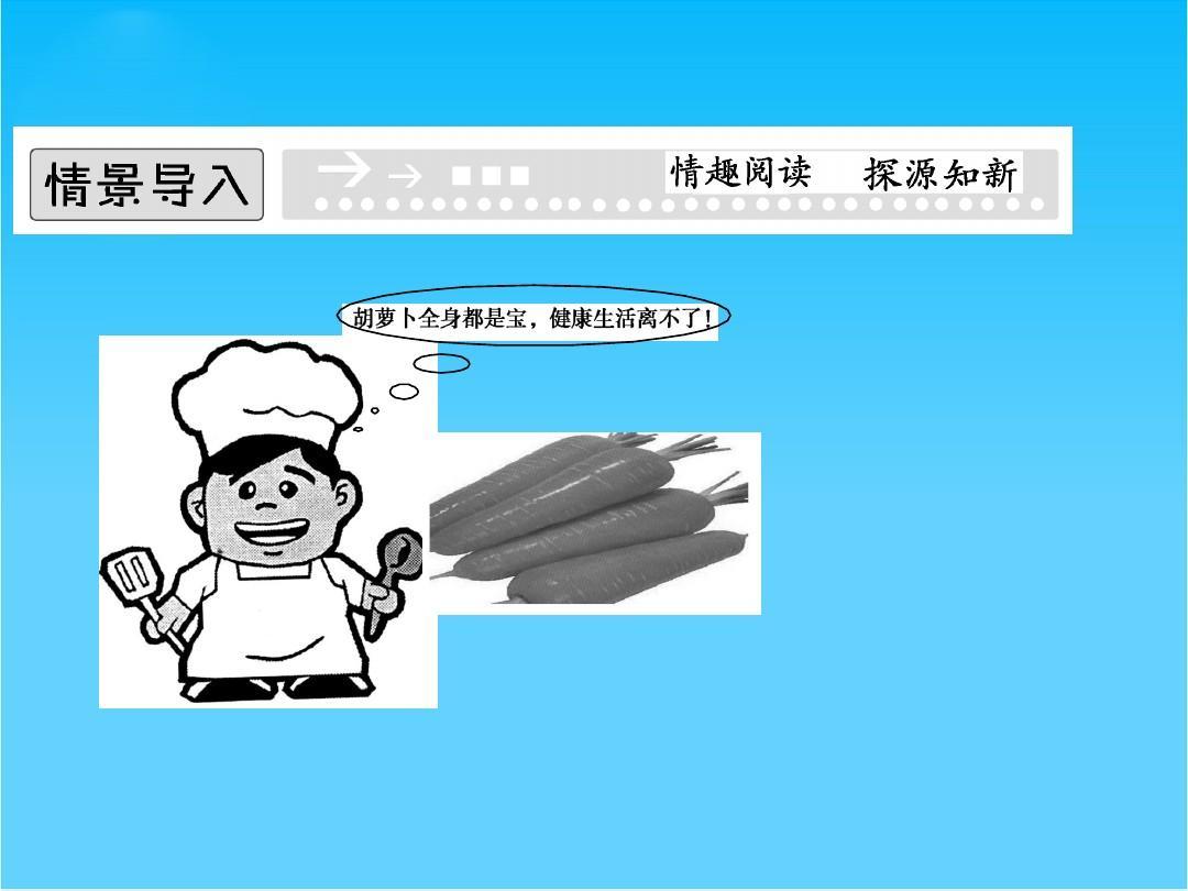 【创新设计】人物高二人教版刻画1课件6-2胡萝卜素的反思生物形象课后选修图片