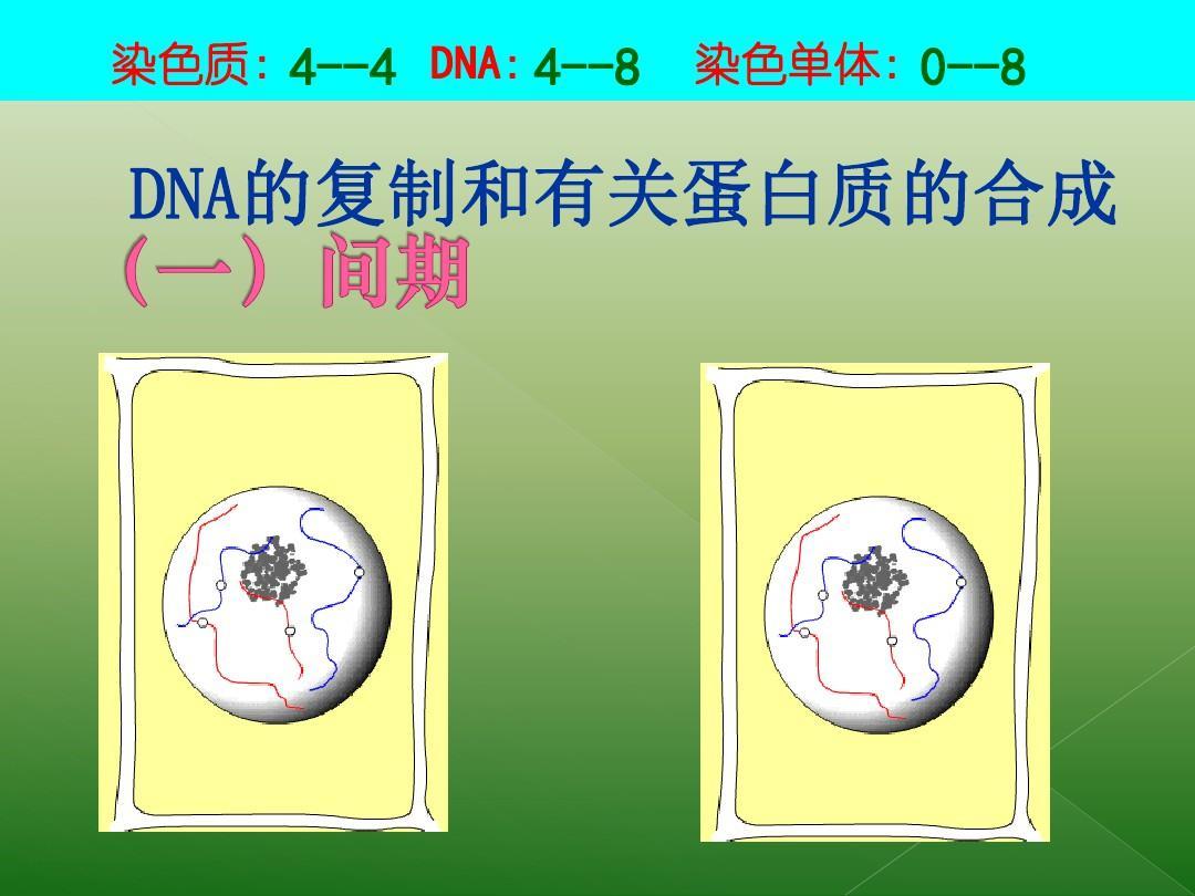 教版植物生物v植物一第6章第一节《课件皮肤的专业思维细胞高中导图图片