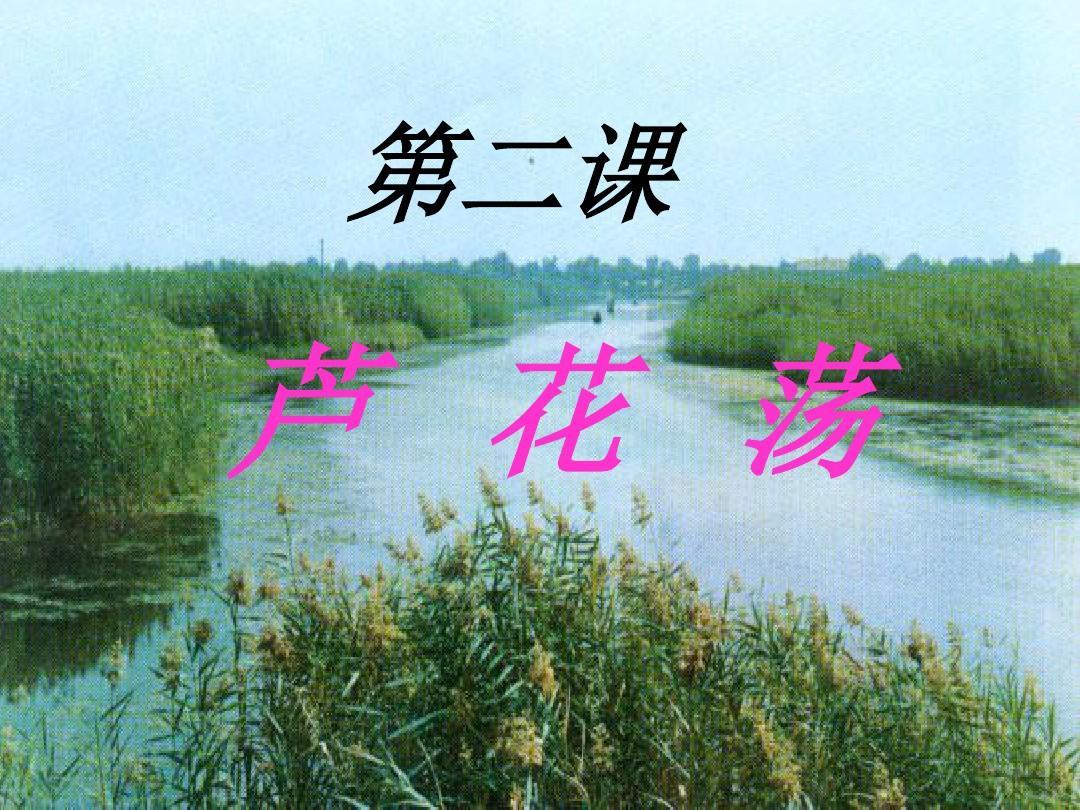 重庆市云阳县盛堡初级中学八年级语文人教版上册2芦花荡课件(共28张PPT)