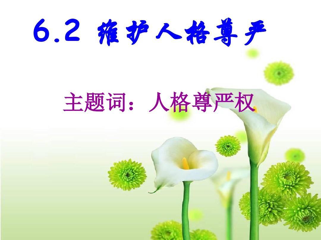 6.2 维护人格尊严(第1课时)