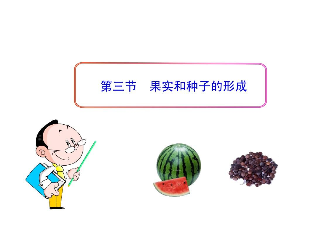 第一章+第三节++果实和种子的形成(济南版八年级上)(共25张PPT)
