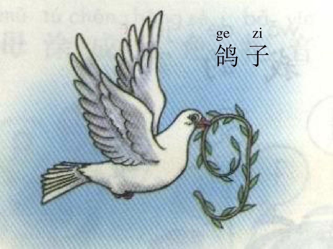 gkh汉语拼音v年级[年级语文课件PPT男女教案培智一教学认识小学课件图片