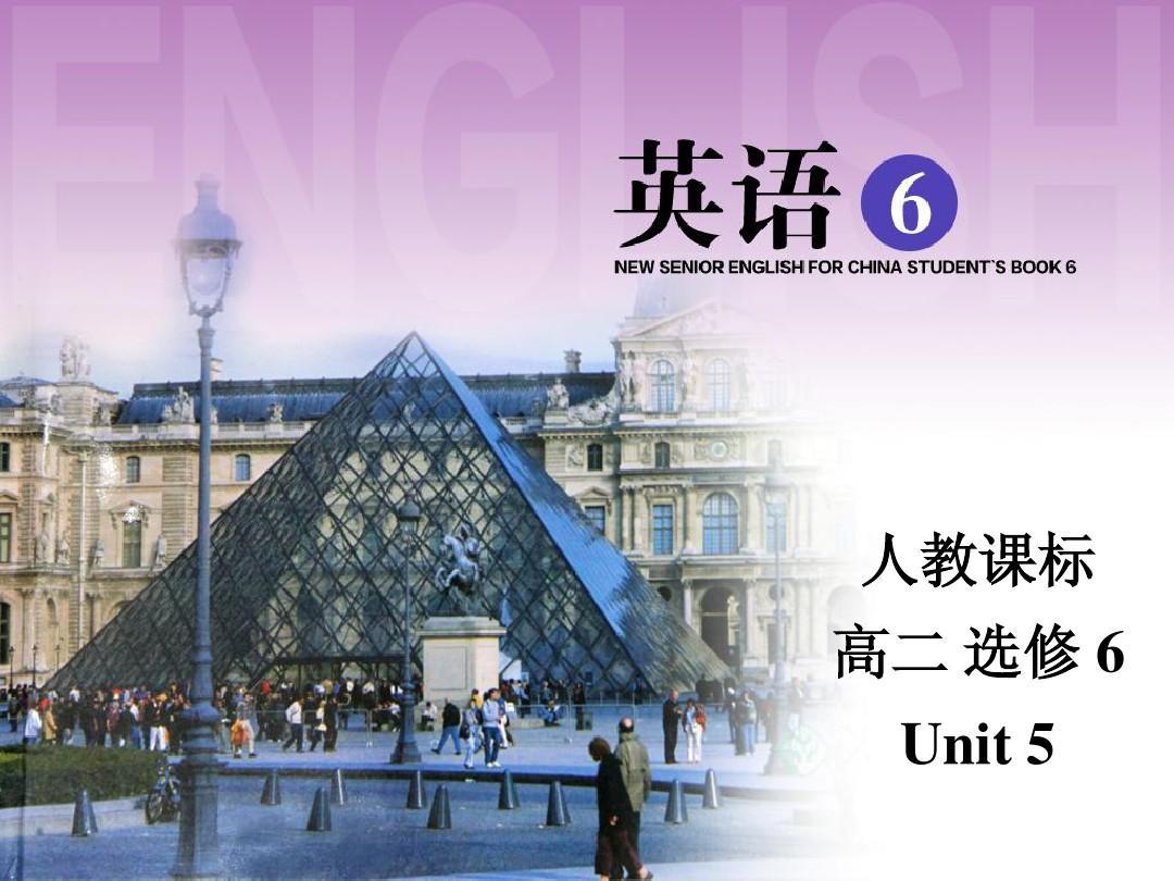 人教新课标Book6 Unit5 Learning about language