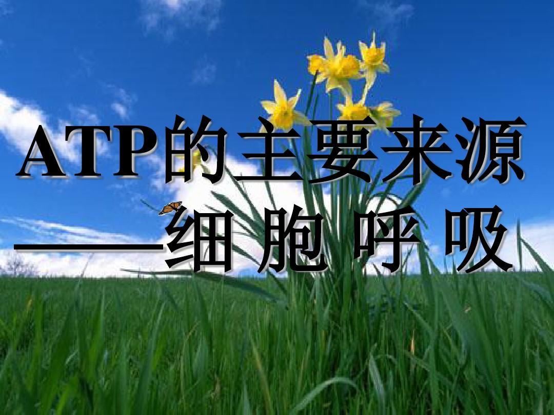 人教版2017年高中生物ATP的主要来源――细胞呼吸课件(1)PPT