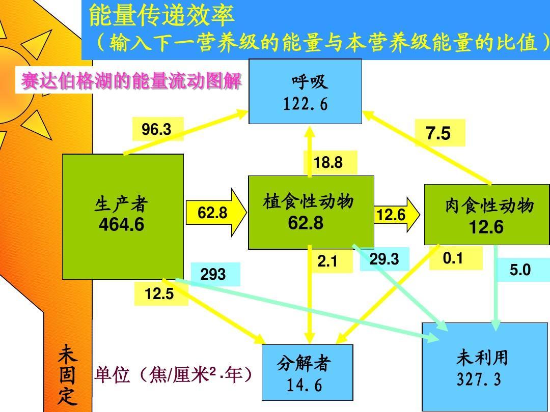 2010年江苏省高中生物课件大赛一等奖:《生态系统的能量流动》课件和图片