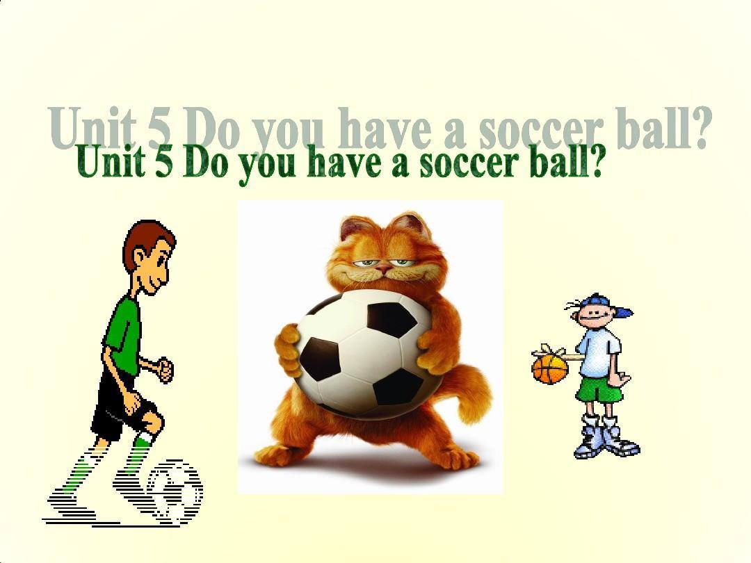 人教版初中英语七年级上册单元教学课件Unit 5Do you have a soccer ball Section B第二课时