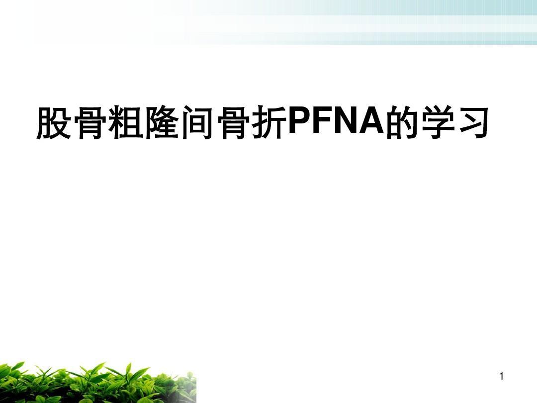 股骨粗隆间骨折PFNAPPT