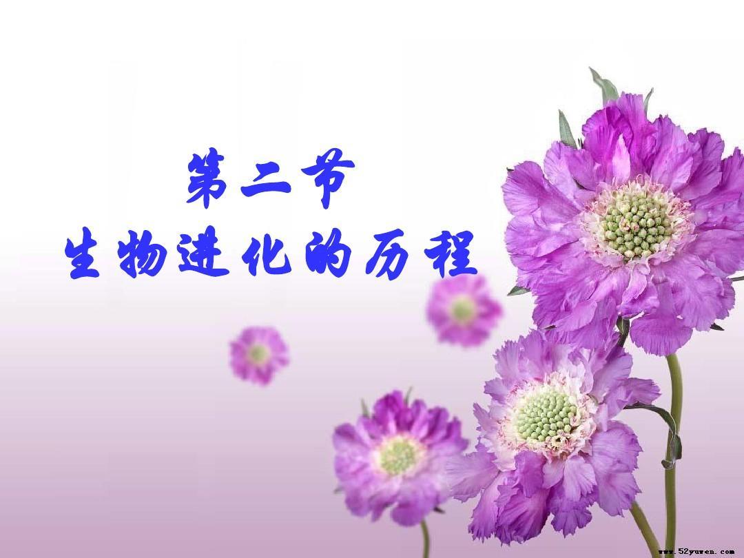 海南省三亚五中八年级生物下册《732生物进化的历程》课件