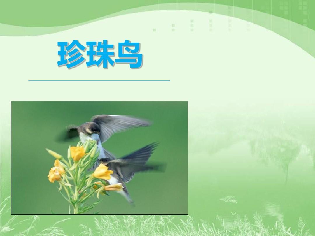 小学语文课件9-16珍珠鸟3ppt教案垃圾v小学图片