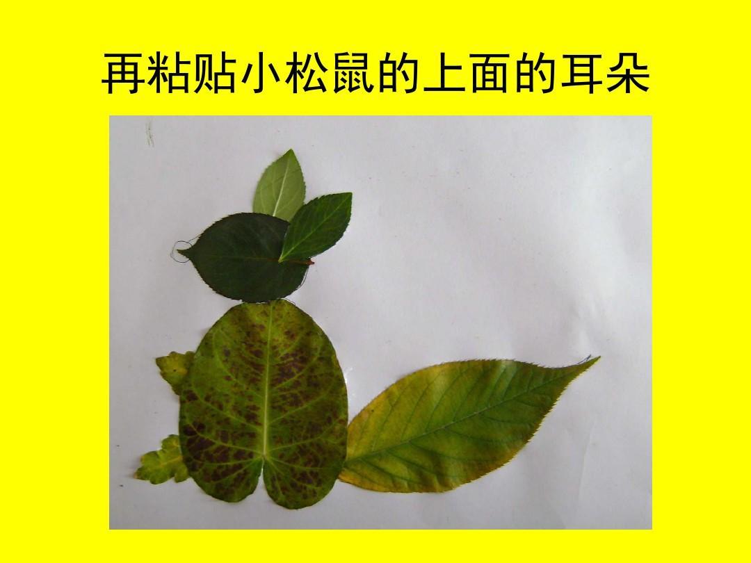 树叶粘贴画的制作过程课件ppt图片
