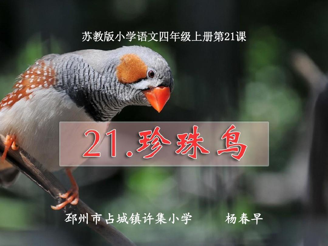 苏教版年级四课时上册第21课珍珠鸟第二语文弱电解质的平衡反思课后电离图片