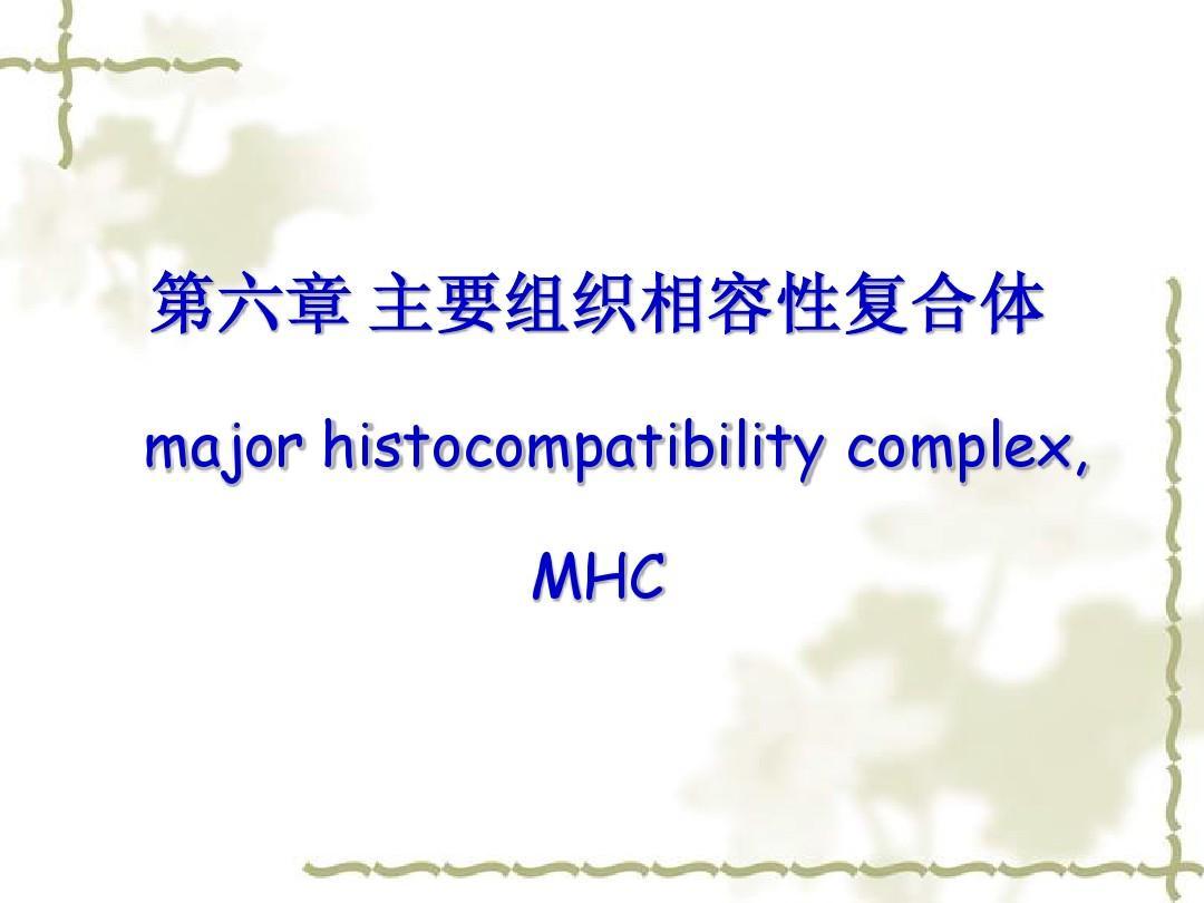 第六章 课件主要组织相容性复合体