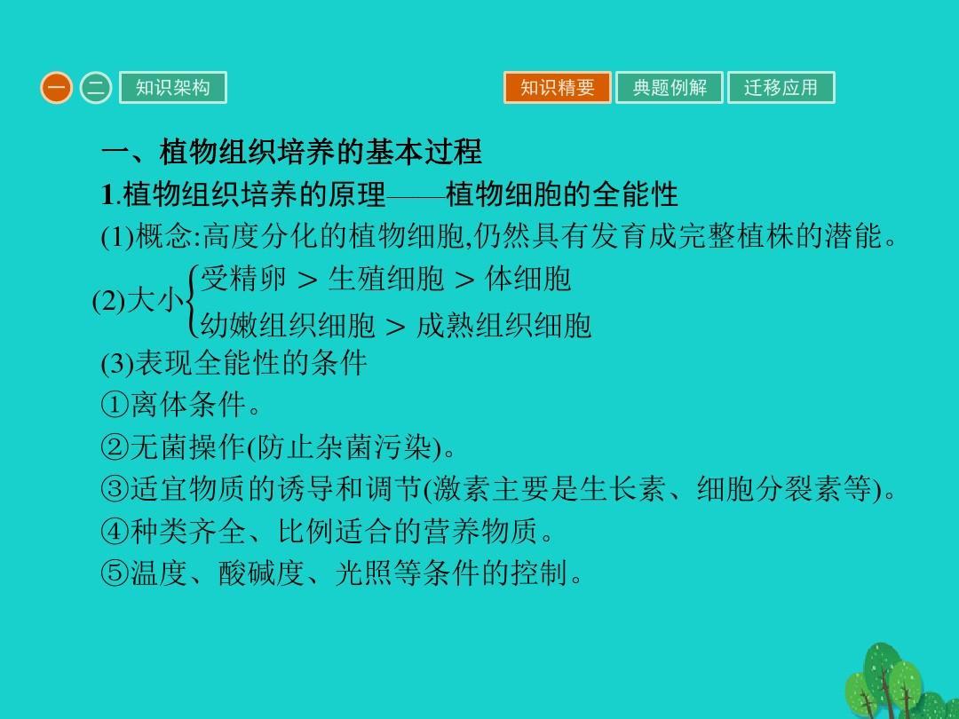 2017春专题课件新人3课题的组织组织菊花植物1技术的培养有所生物高中几培养临邑县高中图片