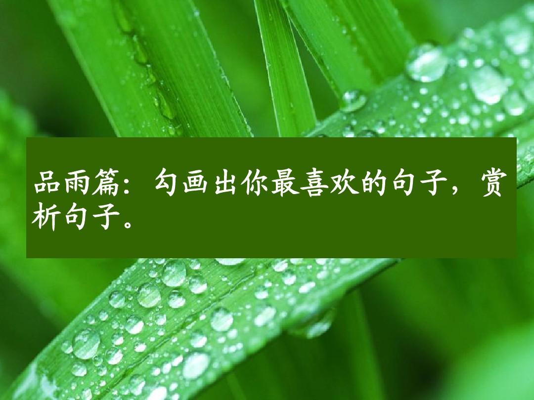 3.雨的四季(刘湛秋 课件)ppt图片