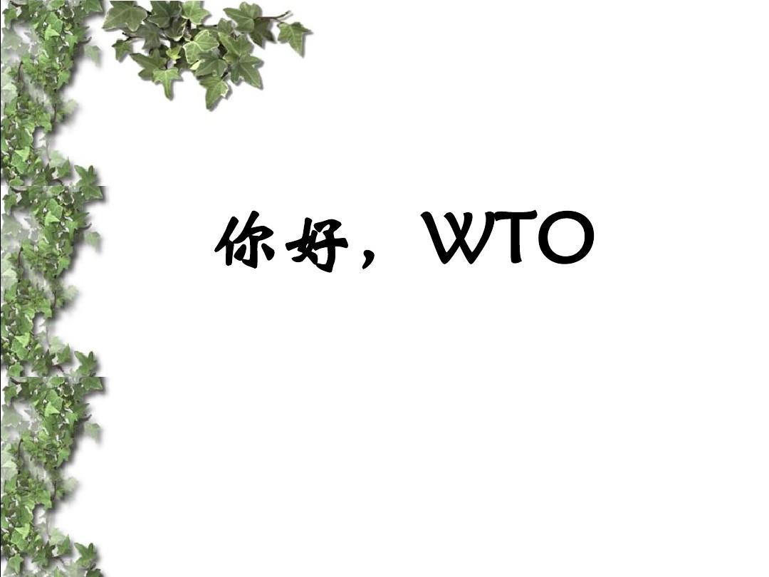《你好,wto》课件1ppt