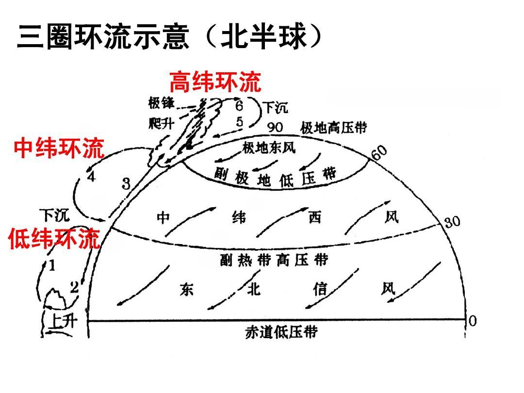 高中地理必修一《大气环境4 全球的气压带和风带》课件ppt  三圈环流图片