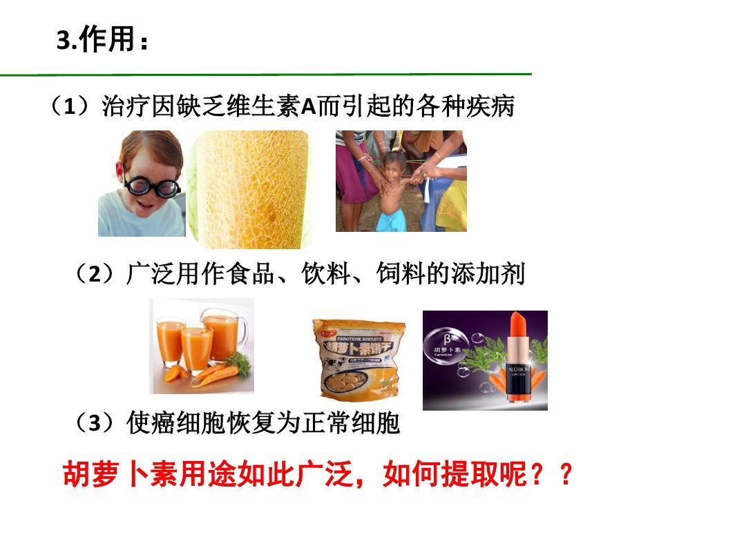 生物版选修1胡萝卜素的提取课件(21张)ppt七人教:无土栽培教学设计图片