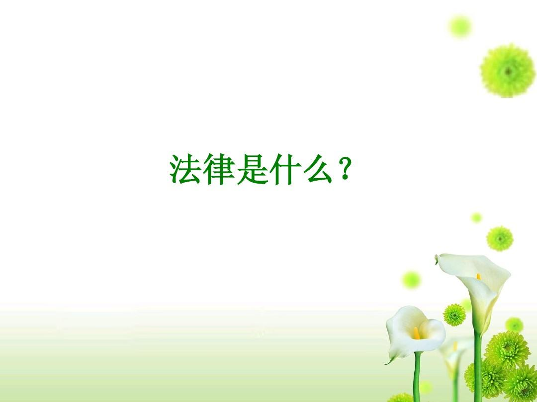 法律基础知识讲座(一)ppt图片
