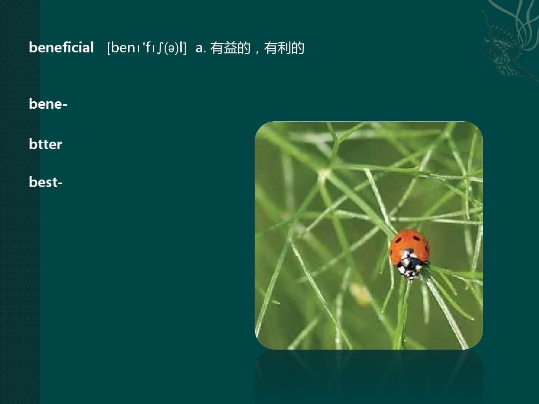 凌波微步ppt_word文档在线阅读与下载图片
