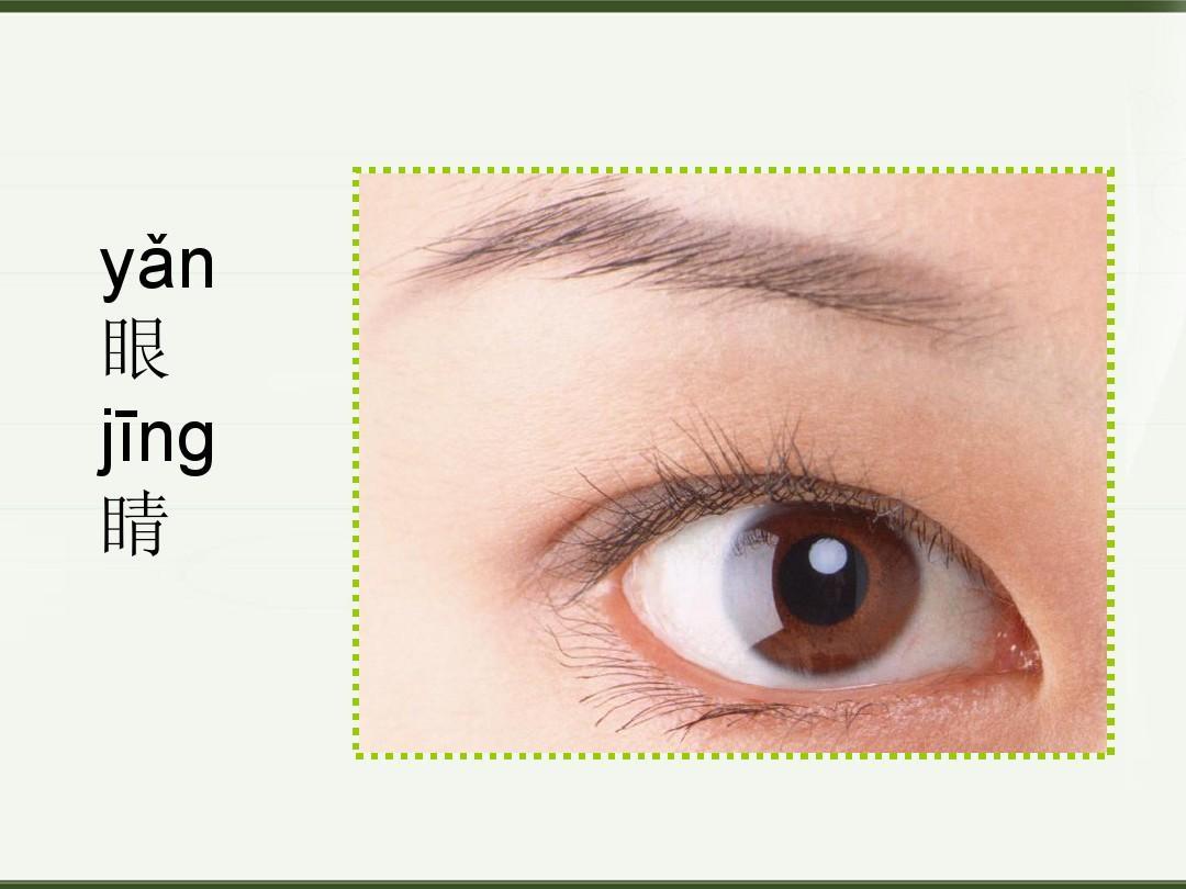 湘教版(2012版)美术一上《大眼睛》ppt课件1图片