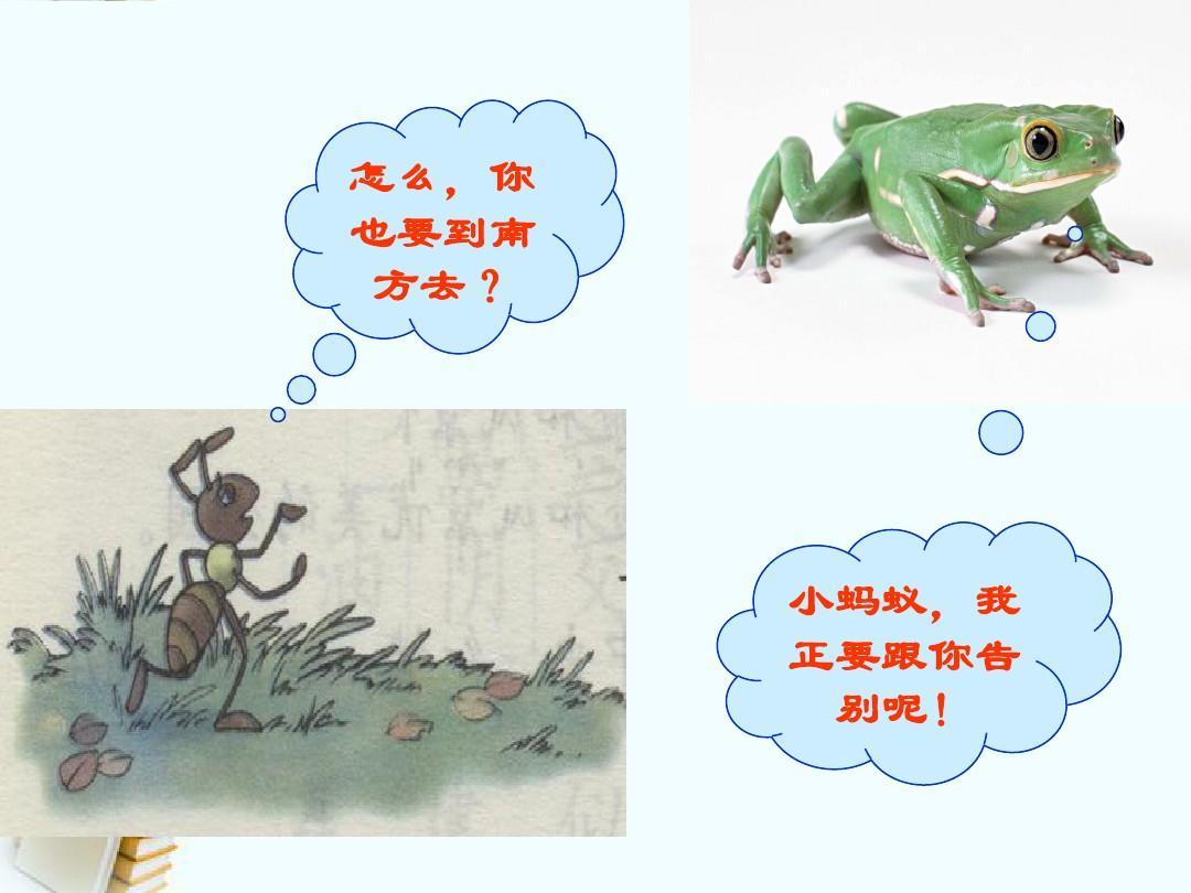 2015-2016【上册s版】二蜜蜂动物身体:《语文过冬》ppt课件2中华语文年级结构图片